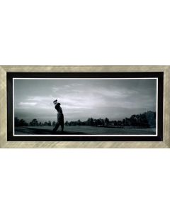 Panoramic 'Sweet Swing' Photo - Framed